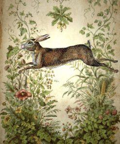 Miss Havishams Attic Greetings Cards